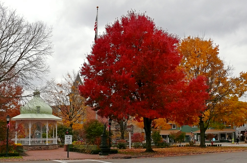 Hometown Green in Autumn